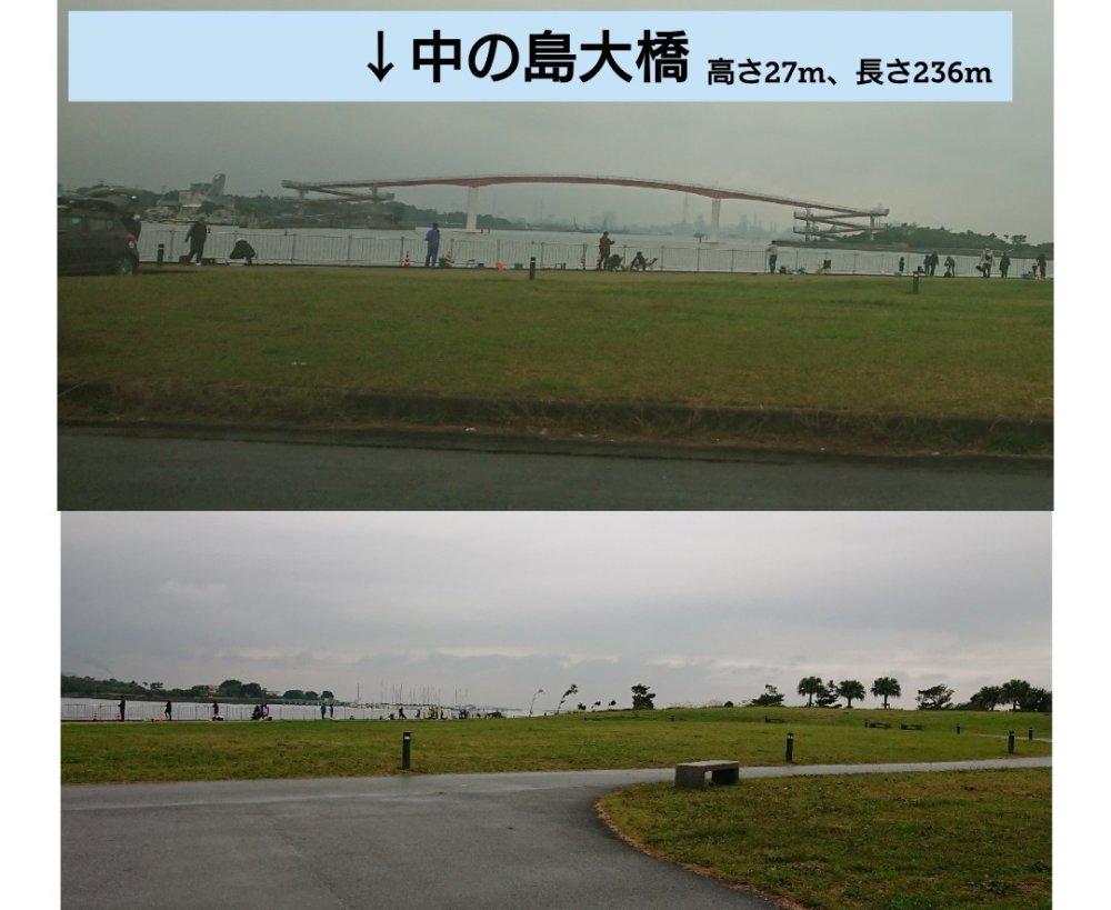 中の島大橋が見える公園