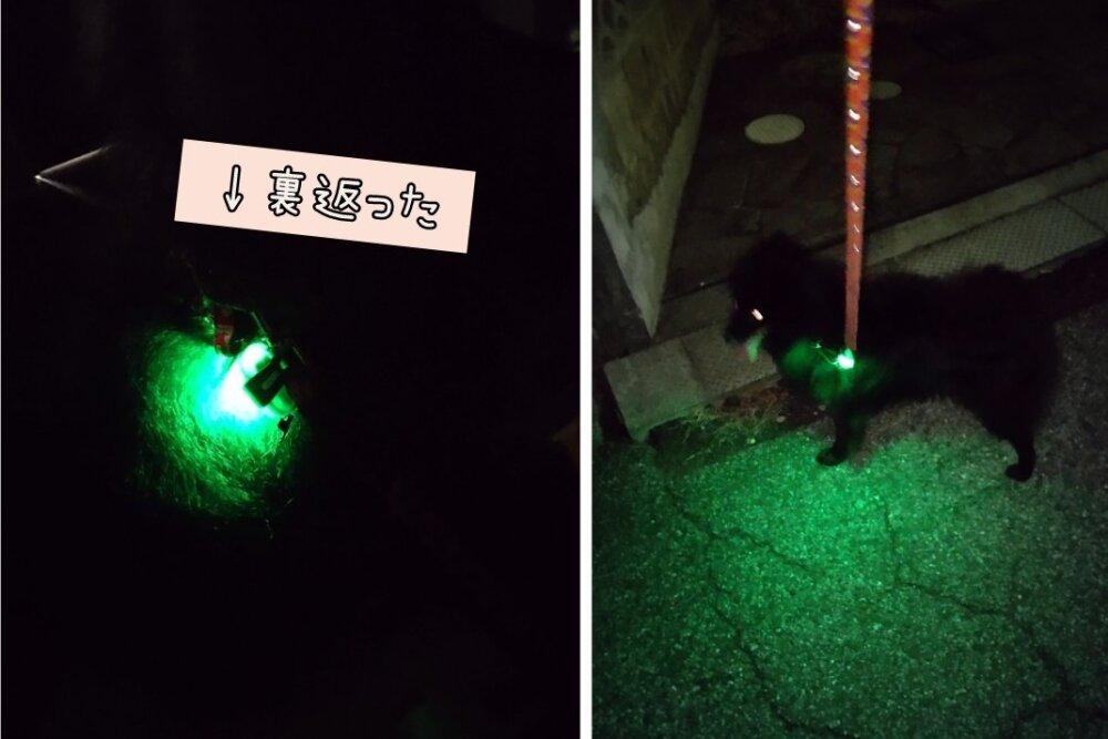 散歩ライトPLATZ