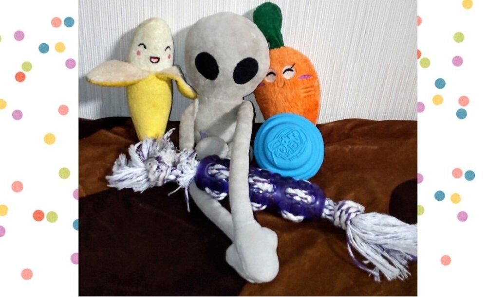 犬のおもちゃ選びの注意点